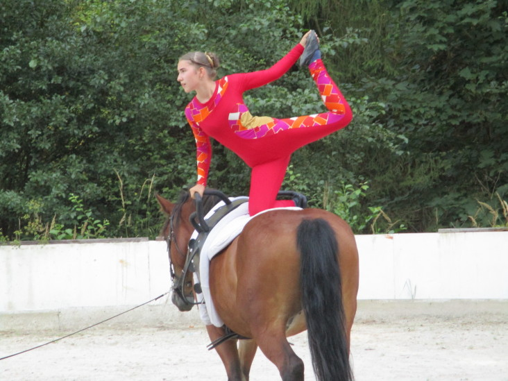 Para-vaulting at FOR HORSE SHOW