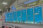 AQUA - DEMO na veletrhu FOR FISHING