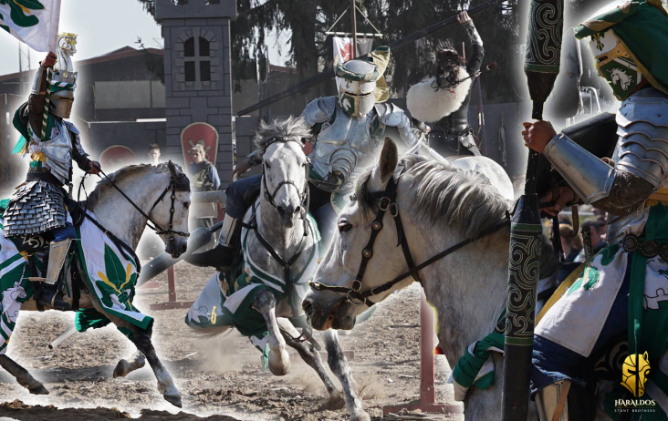 Medieval Jousting on FOR HORSE!