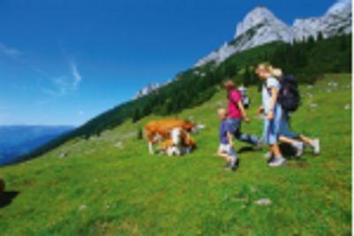 BONUSOVÁ CENA - voucher na prodloužený víkend pro 2 osoby v Národním parku Vysoké Taury